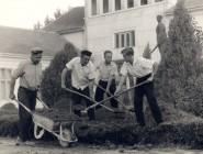 Maliari na pracovnej brigáde